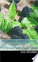 Elizabeth's Sweet Surprise: A Pride and Prejudice Sensual ...