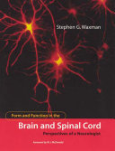 Form and Function in the Brain and Spinal Cord