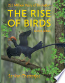 The Rise of Birds Book