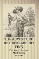 The Adventure of Huckleberry Finn (Tom Sawyer's Comrade) image