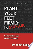 Plant your Feet Firmly in Mid Air  Guidance Through Turbulent Change