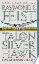 Talon of the Silver Hawk image