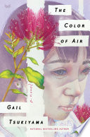 The Color of Air Book PDF