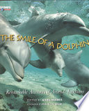 The smile of a dolphin