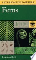 A Field Guide To Ferns Book PDF