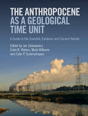 The Anthropocene as a Geological Time Unit