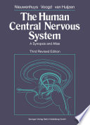 The Human Central Nervous System