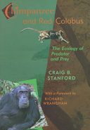 Chimpanzee and Red Colobus