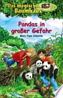 Pandas in grosser Gefahr