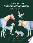 Comparative Veterinary Anatomy