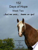 152 Days of Hope  Week Two   Fool Me Once  Shame On You