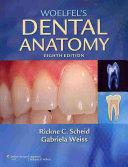 Woelfel's Dental Anatomy