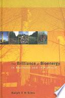The Brilliance of Bioenergy Book