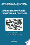Marine Shrimp Culture