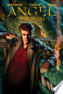 Angel After The Fall Vol 1 Book PDF