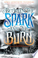 Between the Spark and the Burn Book