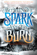 Pdf Between the Spark and the Burn