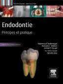 Endodontie ebook