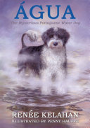 Agua  the Mysterious Portuguese Water Dog