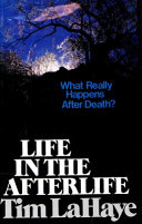 Life in the Afterlife Book