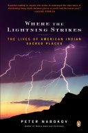 Pdf Where the Lightning Strikes