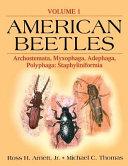 American Beetles
