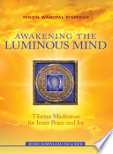 """Awakening the Luminous Mind: Tibetan Meditation for Inner Peace and Joy"" by Tenzin Wangyal Rinpoche"