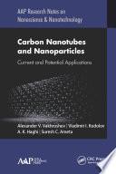 Carbon Nanotubes and Nanoparticles