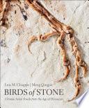Birds of Stone Book