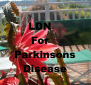 LDN for Parkinson s Disease