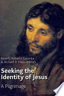 Seeking the Identity of Jesus