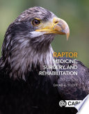 Raptor Medicine Surgery And Rehabilitation 3rd Edition