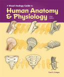 A Visual Analogy Guide to Human Anatomy and Physiology  3e Book