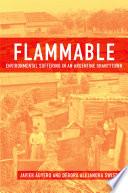 """""""Flammable: Environmental Suffering in an Argentine Shantytown"""" by Javier Auyero, Debora Alejandra Swistun"""