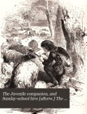 The Juvenile companion  and Sunday school hive  afterw   The Sunday school hive  and juvenile companion  Vol 4  sic   3  no 3  43