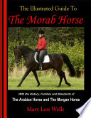 The Illustrated Guide To The Morab Horse