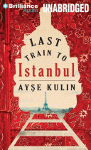 Last Train To Istanbul Book