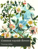 Common Wayside Flowers