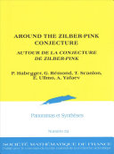 Around The Zilber Pink Conjecture