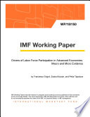 Drivers of Labor Force Participation in Advanced Economies  Macro and Micro Evidence