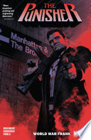 The Punisher Vol  1