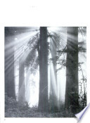 100 Years of Federal Forestry