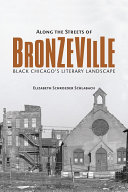 Along the Streets of Bronzeville