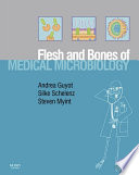 The Flesh and Bones of Medical Microbiology E-Book