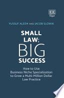 Small Law  Big Success