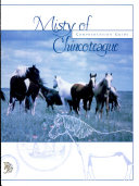 Pdf Misty of Chincoteague Comprehension Guide