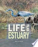 Life in an Estuary