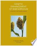 Genetic Enhancement of Rabi Sorghum Book