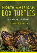 North American Box Turtles