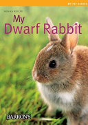 My Dwarf Rabbit